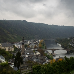 View of the Mosel