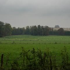 Le Chateau Versailles