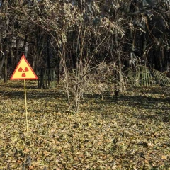 "Sign Outside the ""Red Forest"" - High Levels of Radiation Exist Still"